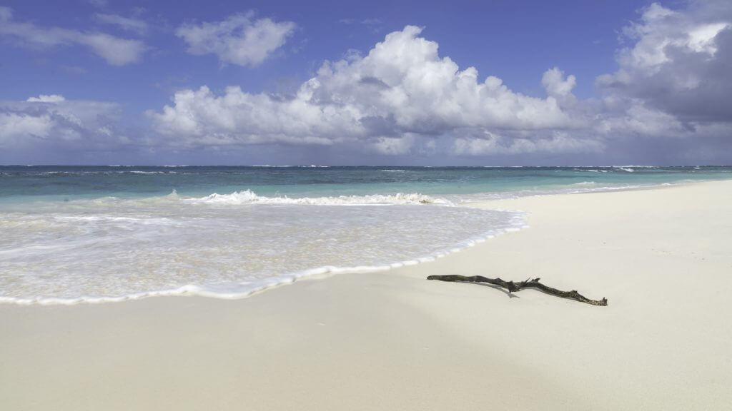 Stick stands on on perfect white sand beach in Anguilla