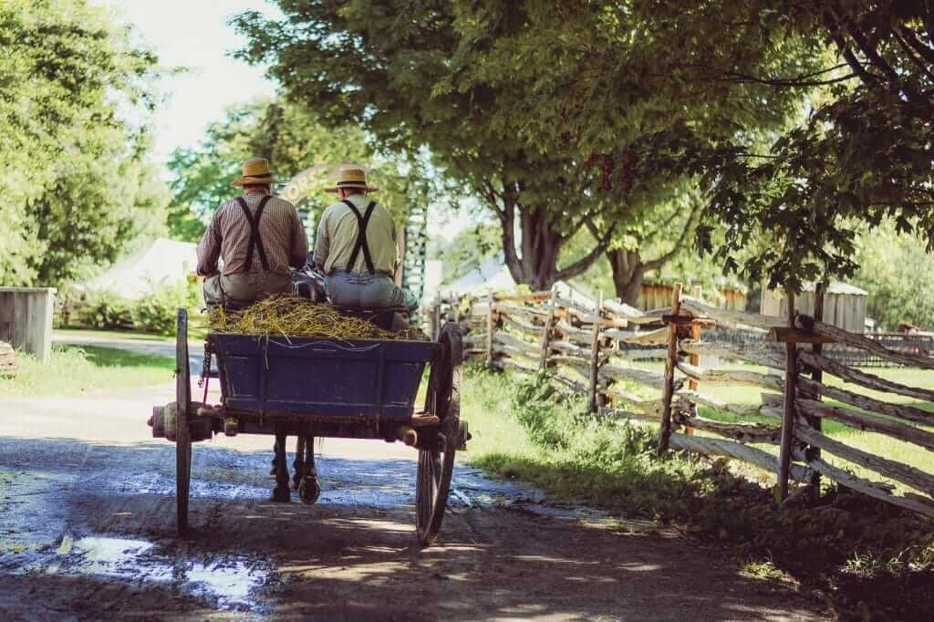 Amish riding in a cart