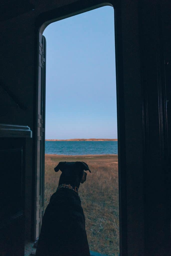 Dog sitting in RV doorway looking out on the sunset over a lake.