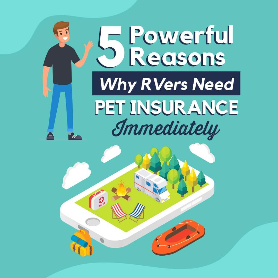 5 powerful reasons why rvers need pet insurance immediately
