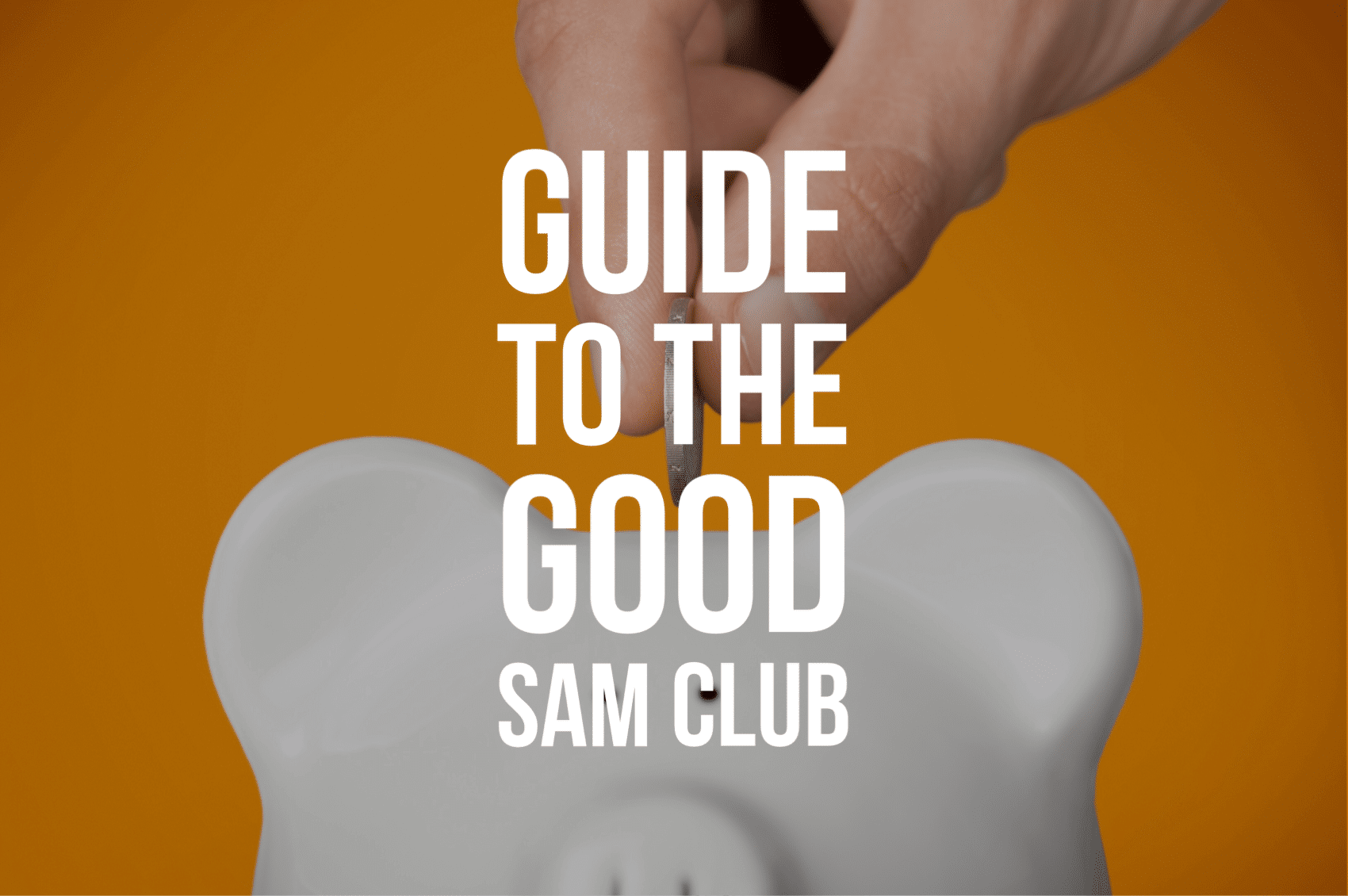 Guide to the Good Sam Club
