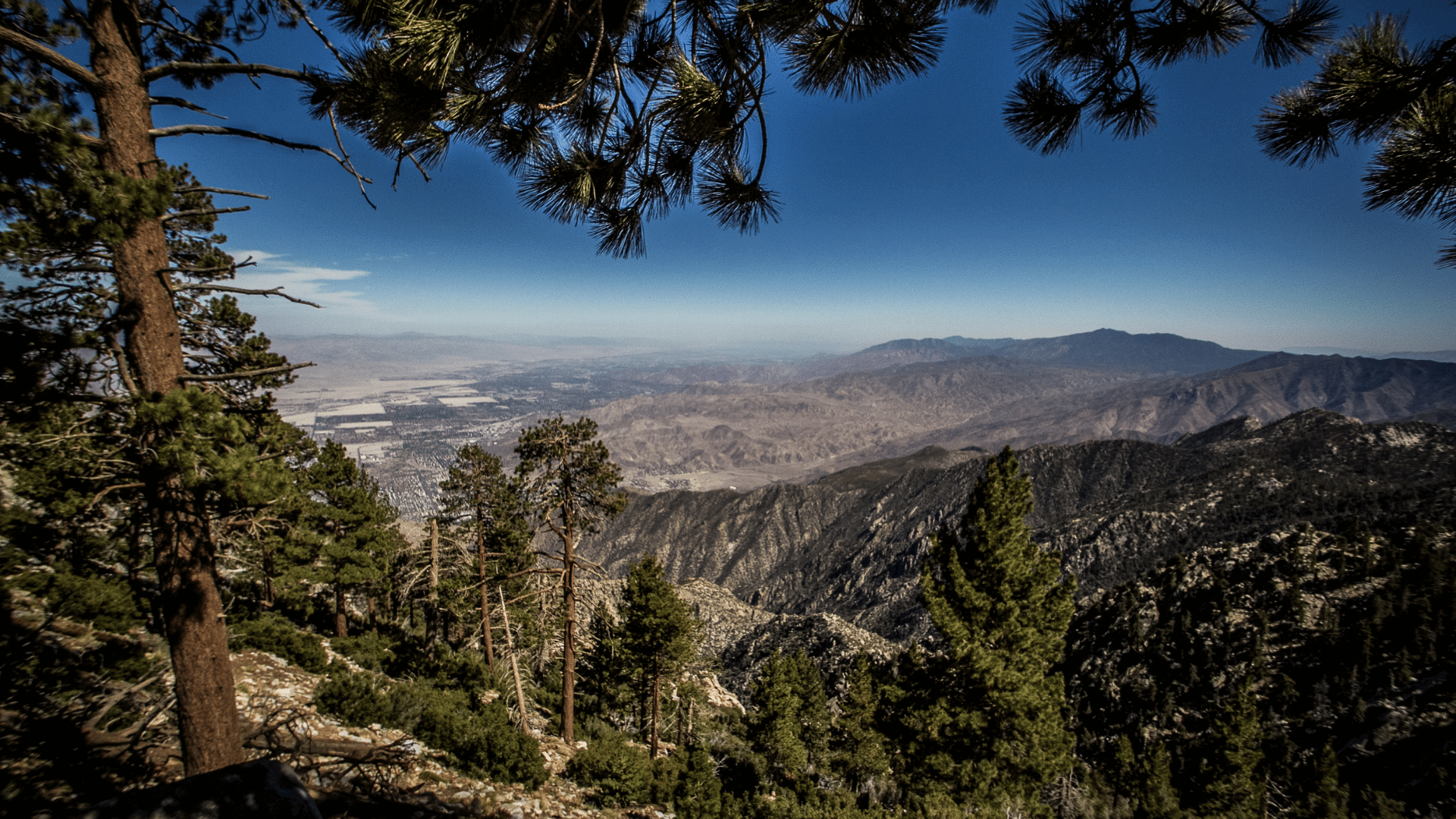 idyllwild view from mountain top