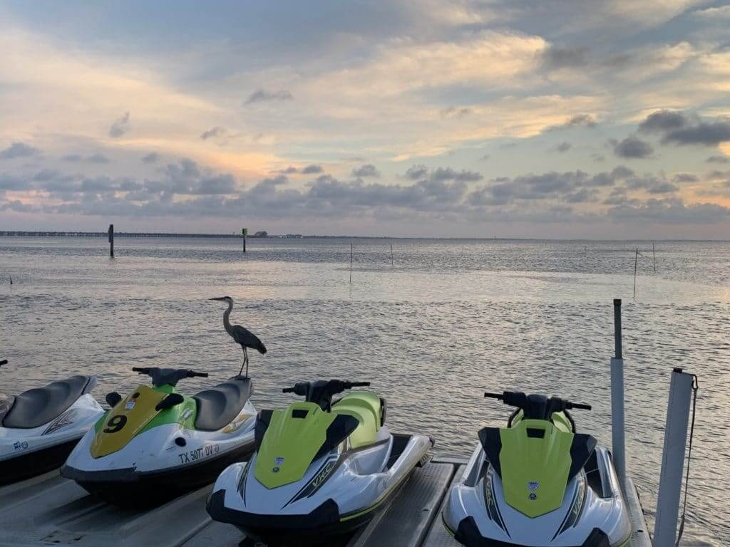 Seedos parked by the water with a heron bird standing on top of one. The Gulf Coast is a great place to visit when staying at Thousand Trails Texas parks.