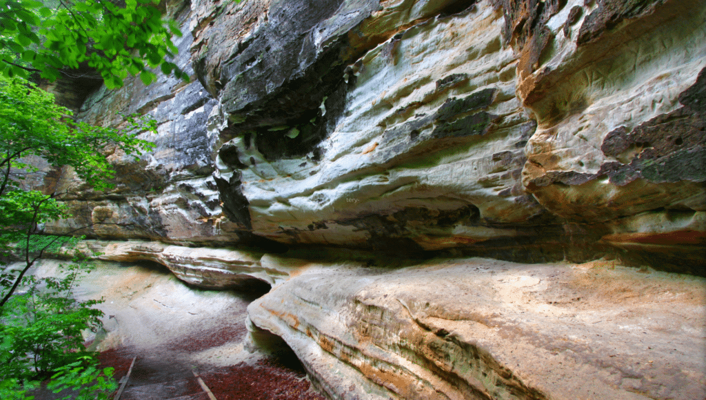 A steep stone cliff with layers can be seen in Starved Rock State Park.