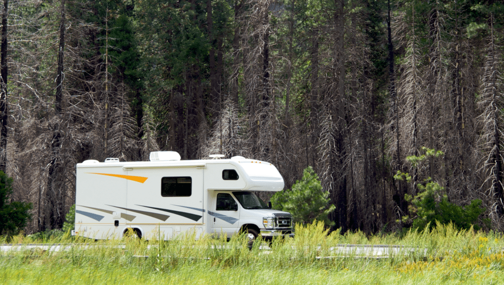 A motorhome is driving on a road in Yosemite National Park with tall trees in the background and grasses and yellow wildflowers in the foreground.