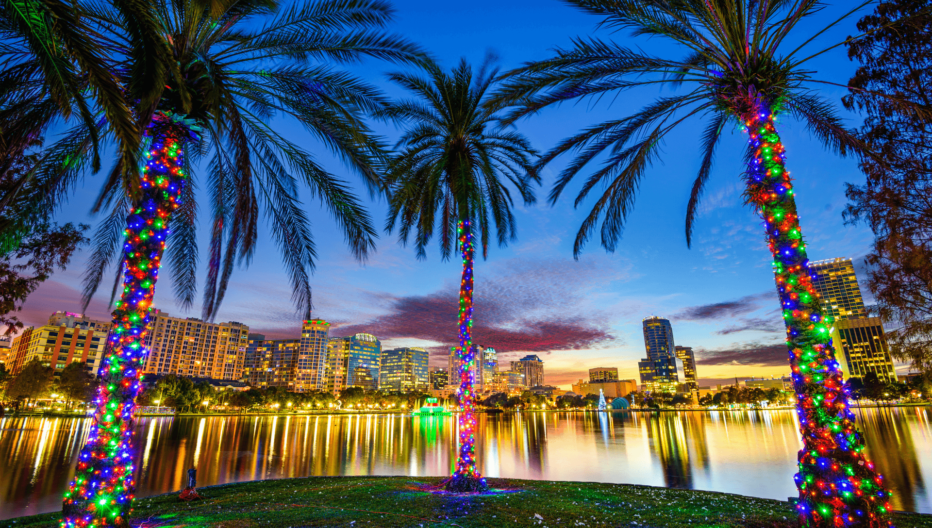 Palm trees with lights wrapped around their trunks are in the foreground. The lit up nightscape of the city of Orlando is the backdrop as the sun is beginning to set.