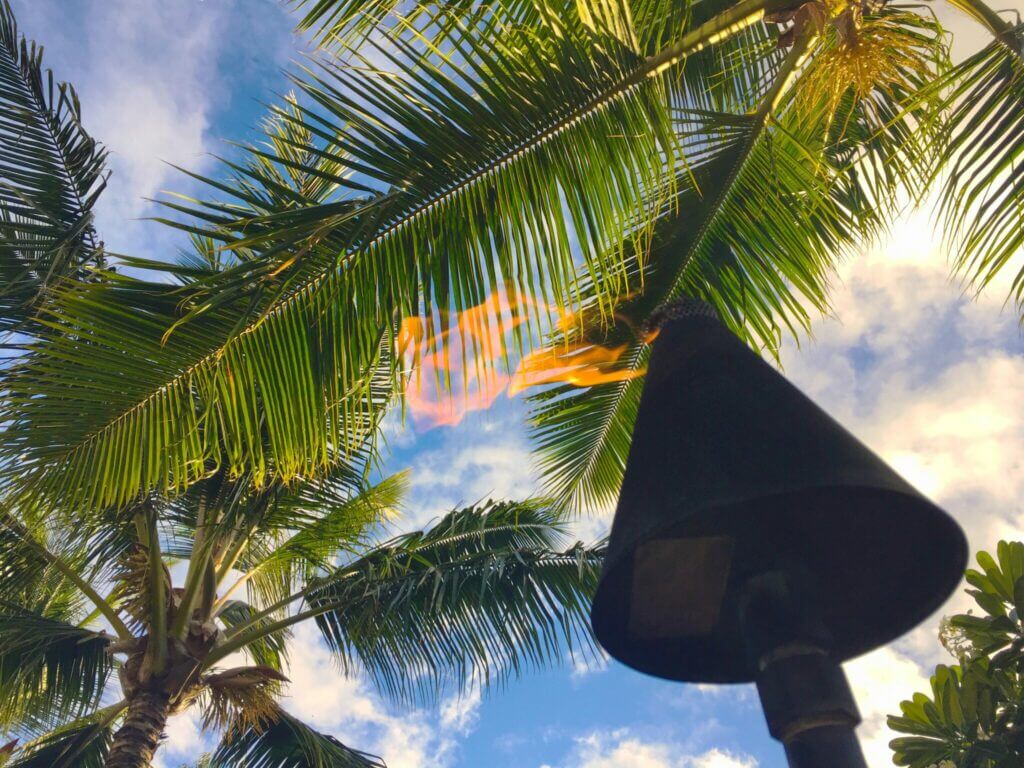 Tiki torch with flame blowing in the wind and palm trees above. A great addition to your perfect RV outside setup.