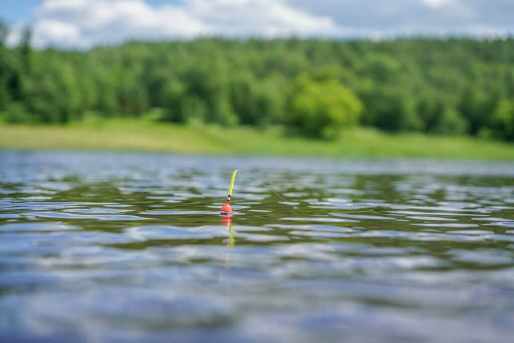 A fishing lure floating on top of water with a blurry background. you can fish when camping at Pineview Reservoir.