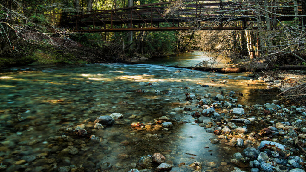 A Big Sur campground is set along the river in the forest.