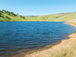 San Luis Reservoir has green rolling hills and deep blue water making it the perfect place to camp in central california!