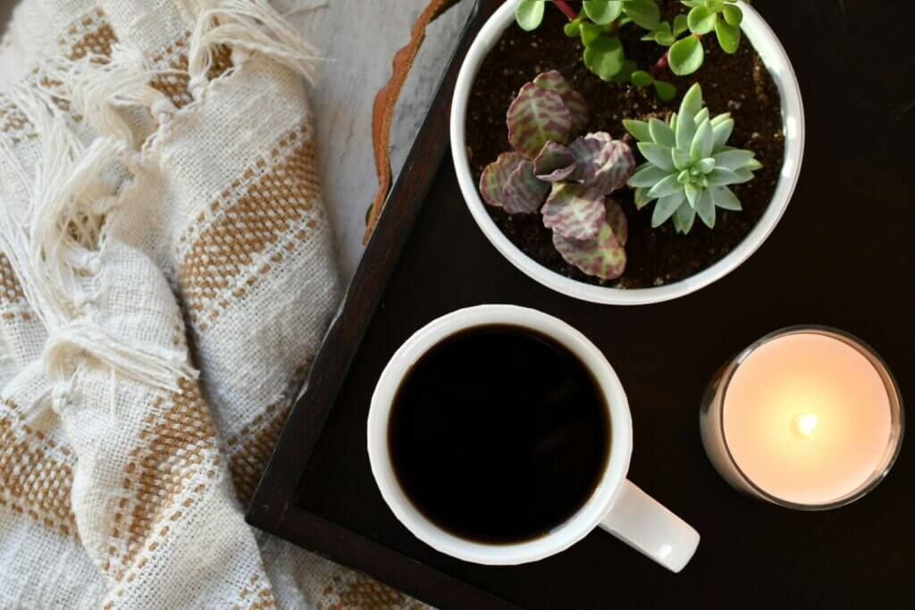 A throw blanket next to a tray that has a cup of coffee and a pot of succulents on it.
