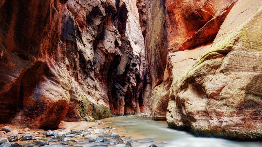Hike through gorgeous landscapes or through the Narrows in Zion National Park.