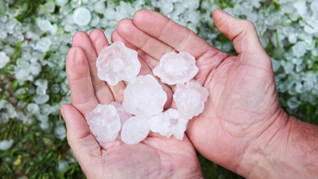 A man holds golf ball sized hail. Extreme weather should be expected on a cross country road trip.