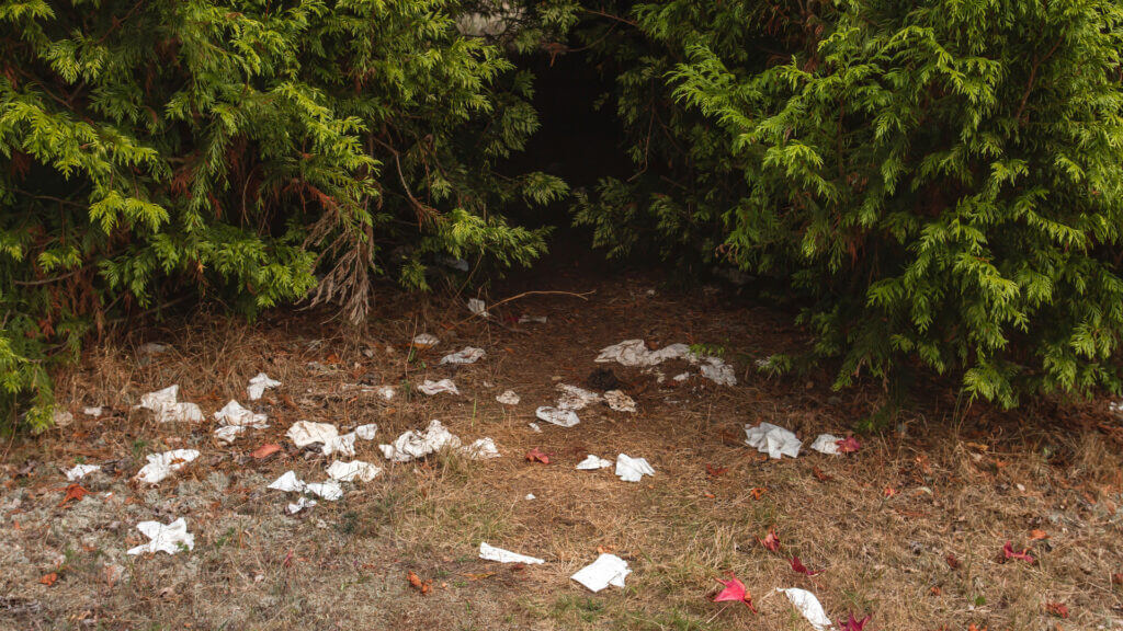 A campsite was left trashed and leaves a disgusting sight.
