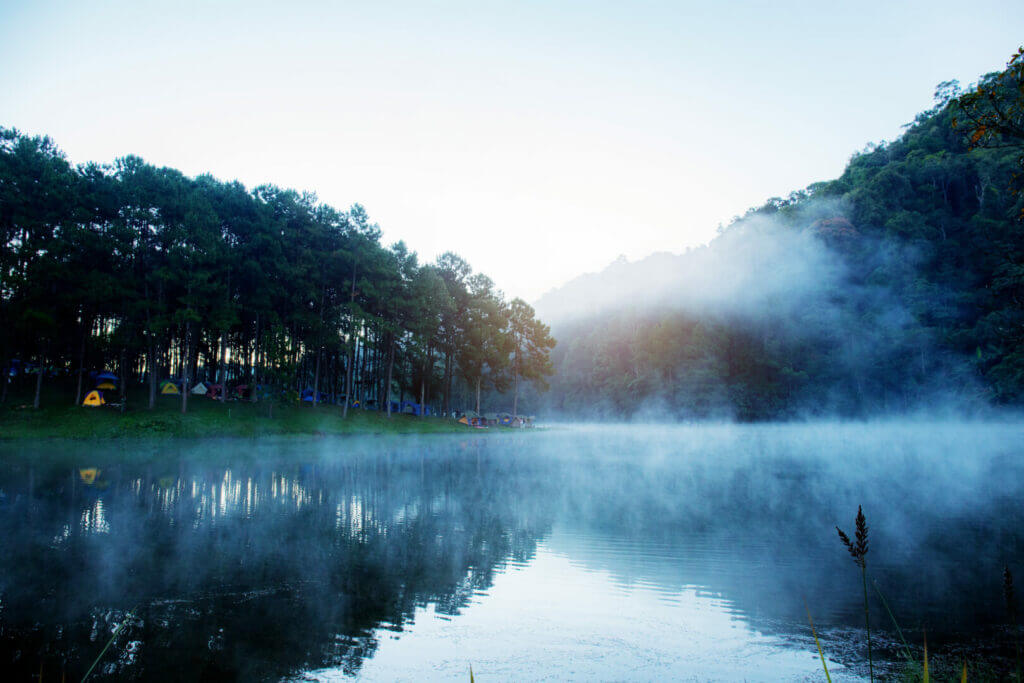 A blue lake surrounded by a lush forest with tents pitched along Taryall Reservoir camping shoreline.