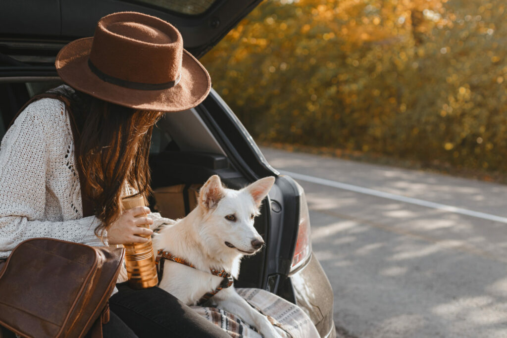 Woman with her dog in a car following camping rules.