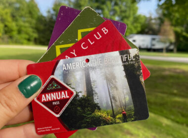 RV membership cards held up against a grass lawn.