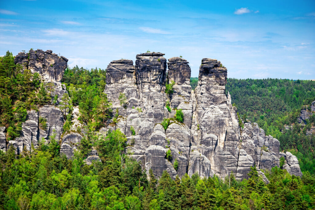 Rim Rock protruding from the Shawnee National Forest canopy.