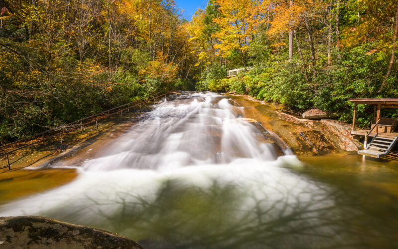 Pisgah National Forest is a gorgeous place to visit in the fall in North Carolina.