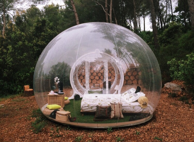 Clear camping pod in forest.
