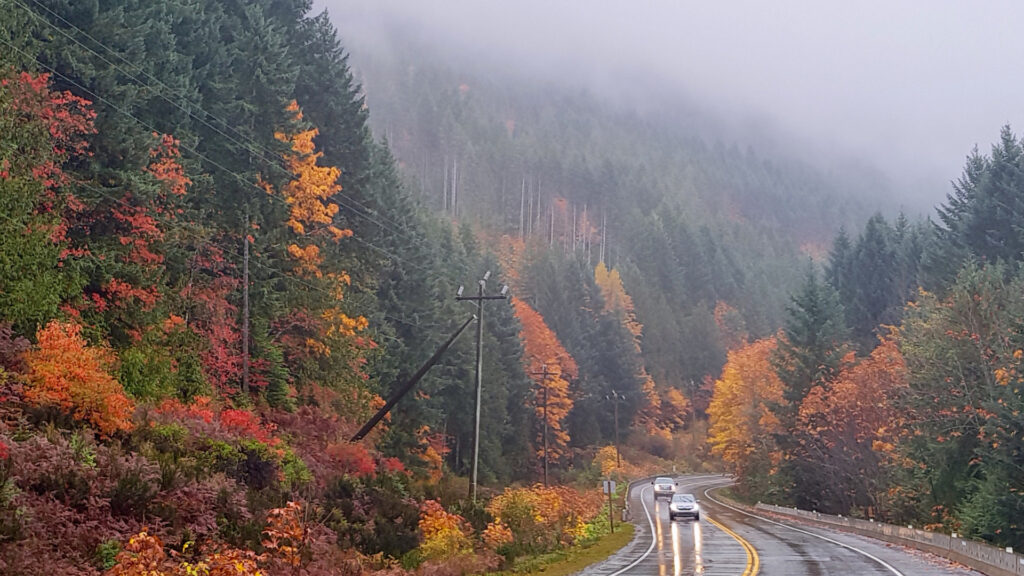 A rainy day gray day on a wet highway with trees turning fall colors along the sides.