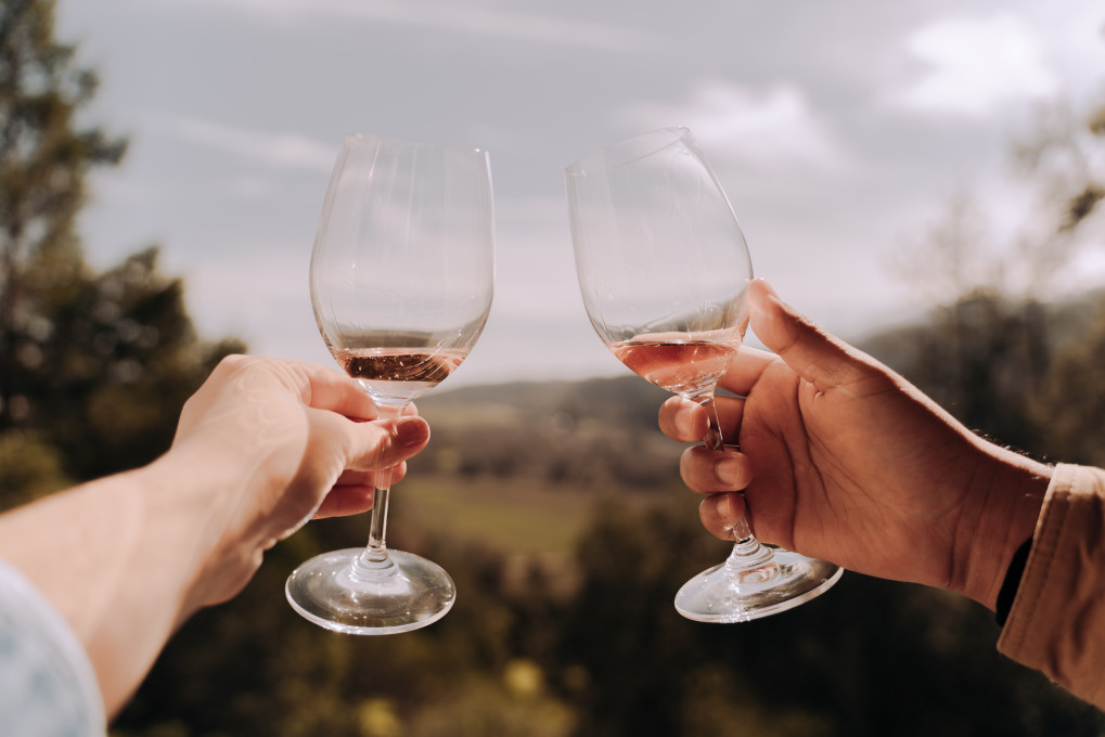 Close up of two hands cheersing wine glasses outside with trees and hills in the distance