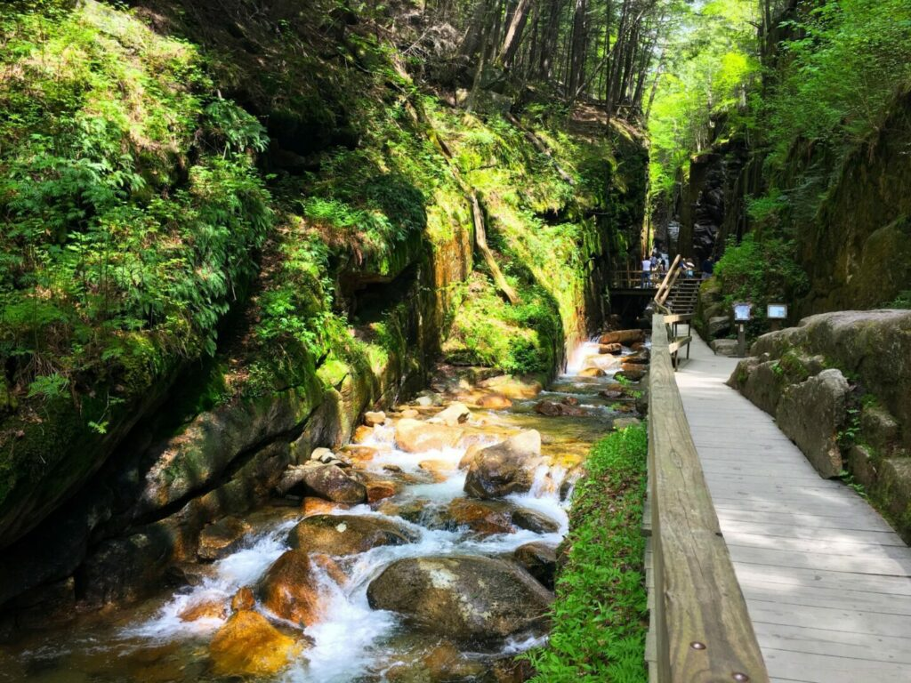 Water rushing through the lush Flume Gorge in White Mountain National Park while tourists walk along a trail